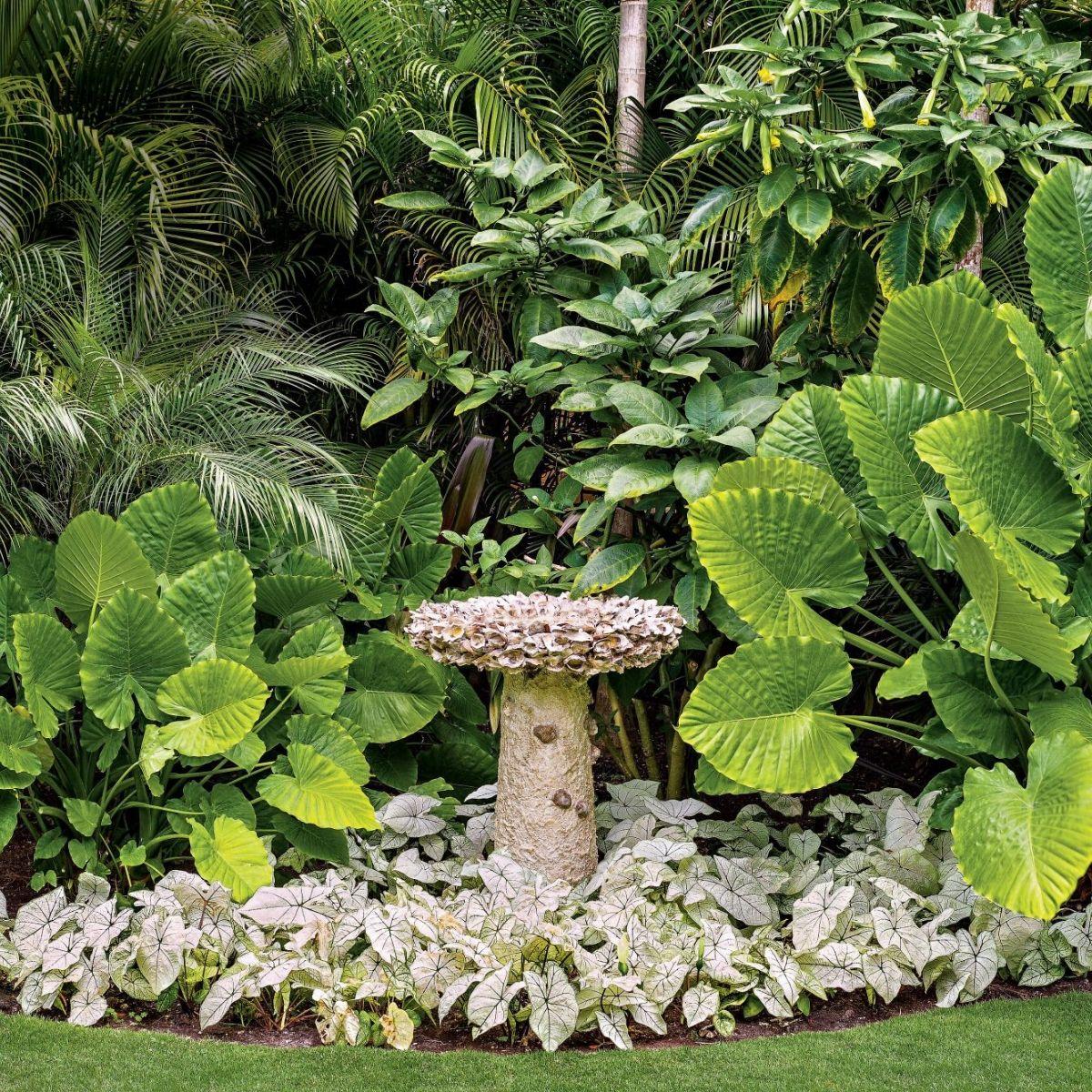 florida-garden-with-oyster-birdbath