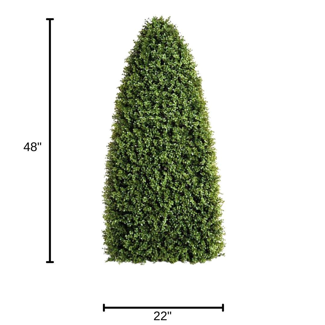 obelisk-dimensions boxwood enduraleaf