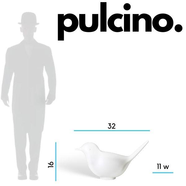 pulcino-dimensions.jpg
