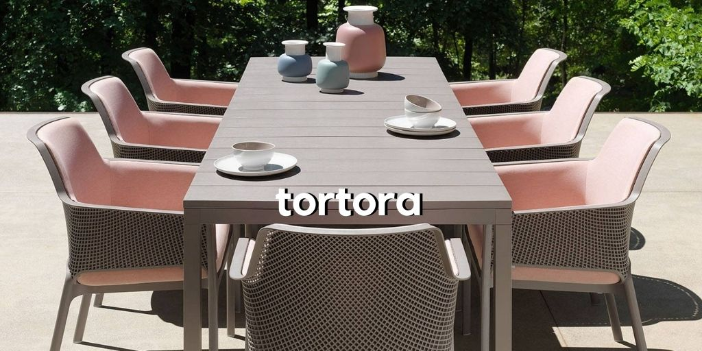 tortora-table
