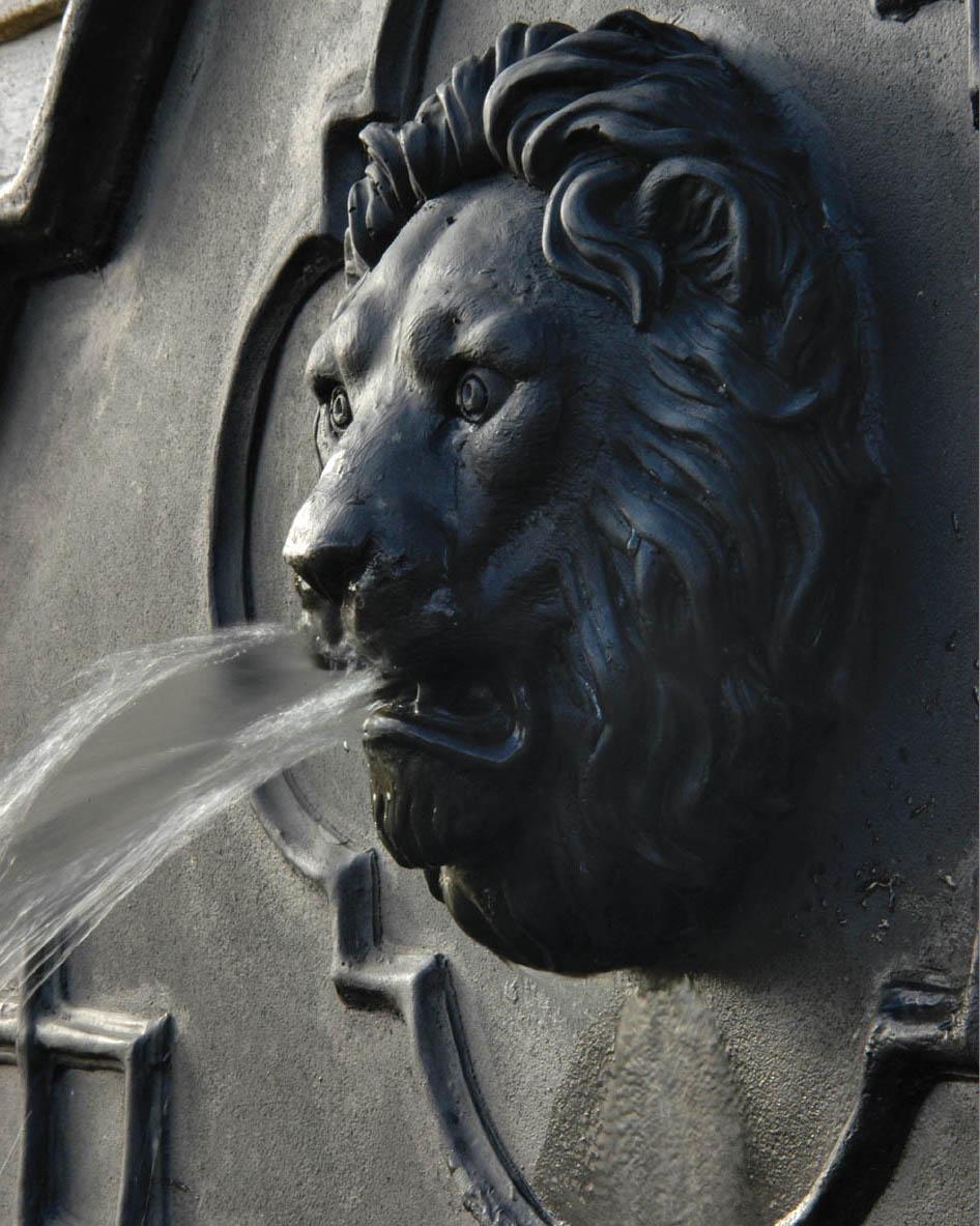 capital garden fountain lion nozzle