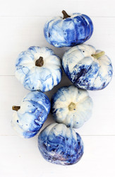 The Best Pumpkins | DIY Creative Pumpkin Ideas
