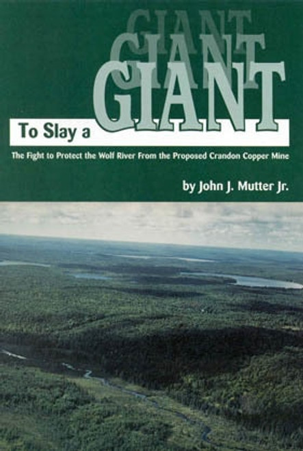 To Slay a Giant - Book