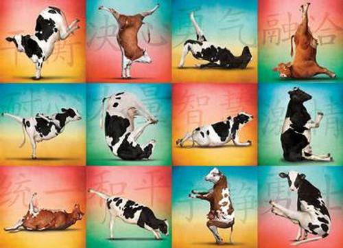 Cow Yoga Puzzle