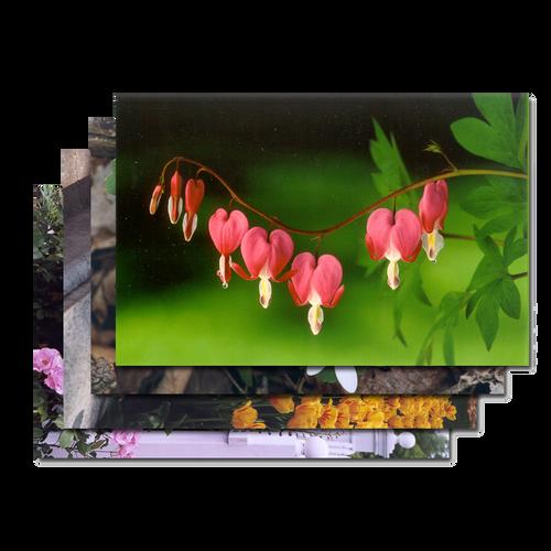 Flower Card Gift Set