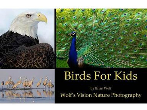 Birds For Kids - Book