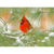 Cardinal Note Card by Wolf's Nature Vision Photography - Alt Image 2