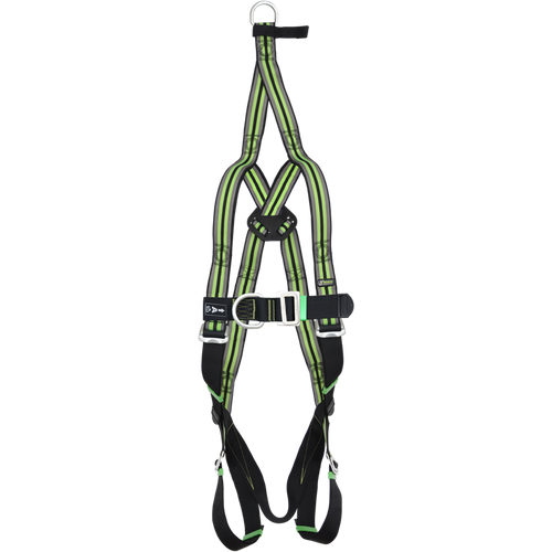2 Point Essential Full Body Rescue Harness