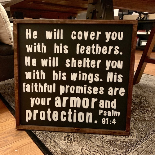 Armor & Protection {Psalm 91:4}