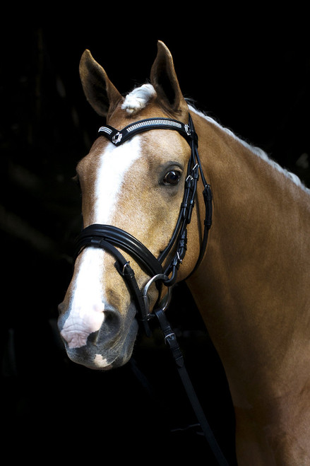 Black Snaffle Bridle With Shield Bling Browband