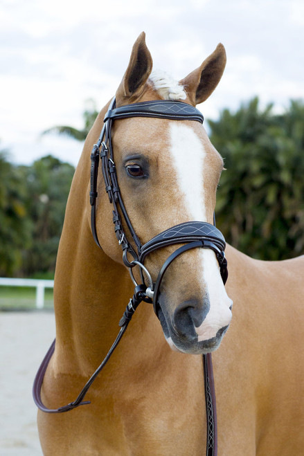 Brown Anatomical Fancy Stitch Snaffle Bridle