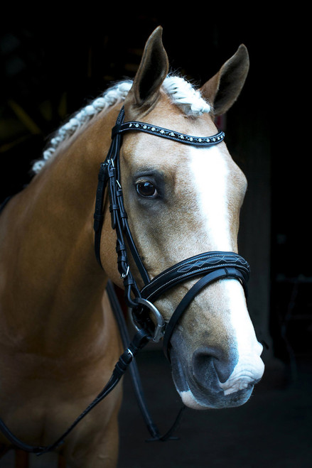 Fancy Stitch Snaffle Bridle With Black and Clear Bling Browband