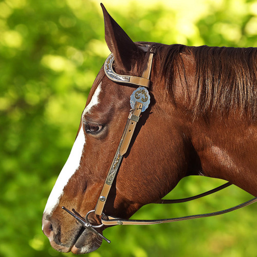 Gus Modelling Light Tan One Ear Show Bridle With Decorative Silver-Work