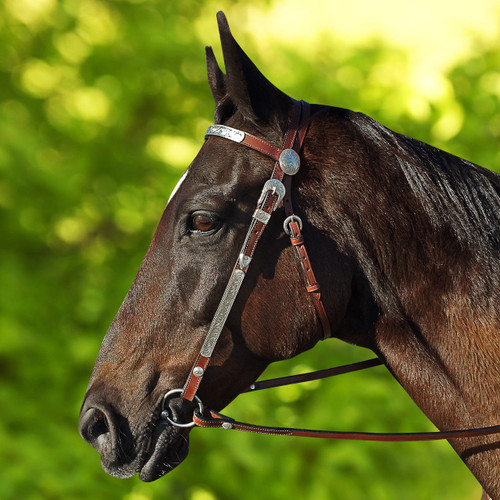 Bear Modelling Dark Brown Western Show Bridle With Fancy Silver-Work