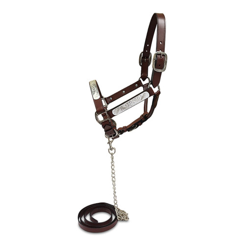 Brown Leather Western Show Halter With Matching Leather Lead.