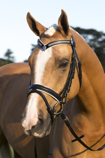 Black Leather Snaffle Bridle With White Padding and Shield Bling Browband