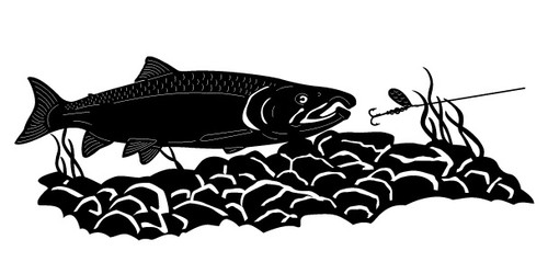 Fish Scene