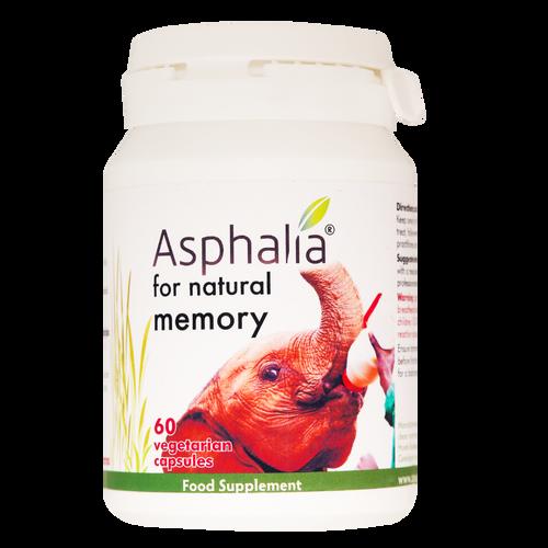 Asphalia for Memory