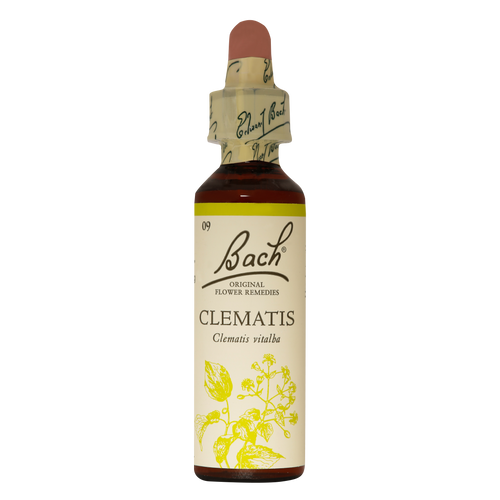 Bach Clematis flower remedy is for people who live in a world of their own with no interest in the real world.