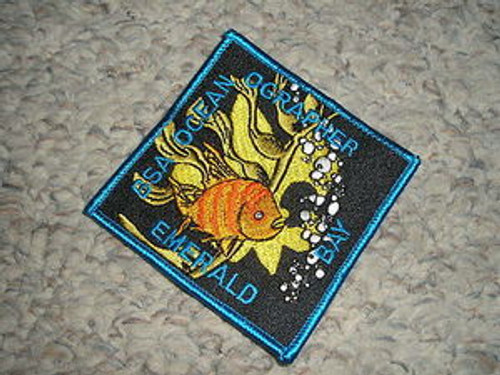 Camp Emerald Bay Oceanographer Patch - Variety #2