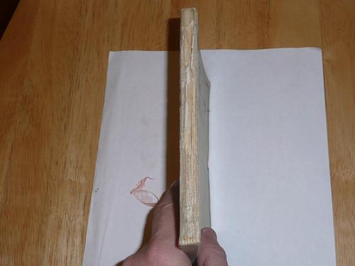 1920 Sea Scout Manual, Rare White Cover, Some Wear