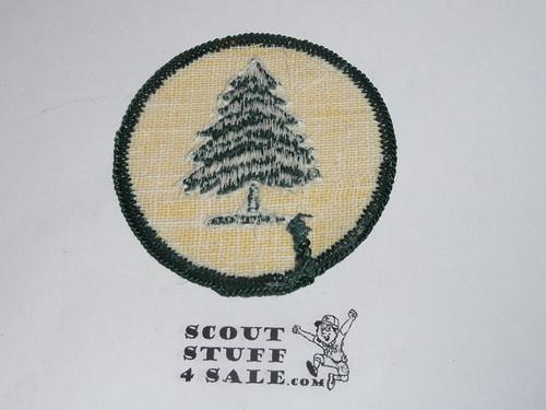 Pine Tree Patrol Medallion, Yellow Twill with gauze back, 1972-1989