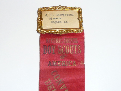 1928 Boy Scout National Meeting Delegate Ribbon