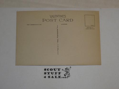 """1929 World Jamboree, Postcard """"Arrowe Park Trees"""""""