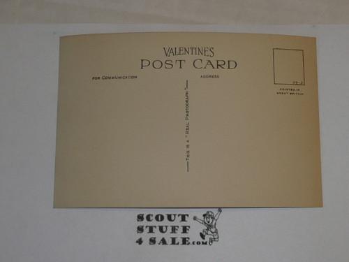 "1929 World Jamboree, Postcard ""In the Woods, Arrowe Park"""