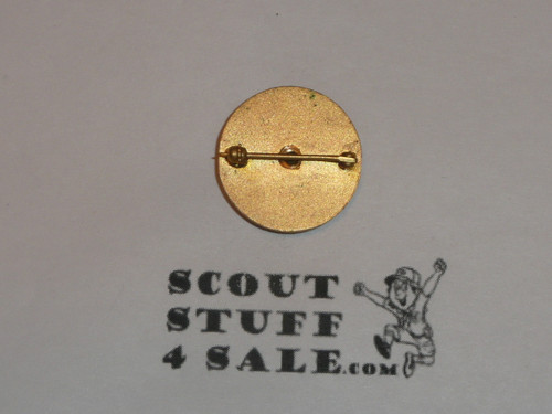 National Executive Board Lapel Pin, Type 2, RARE, Horizontal spin lock clasp
