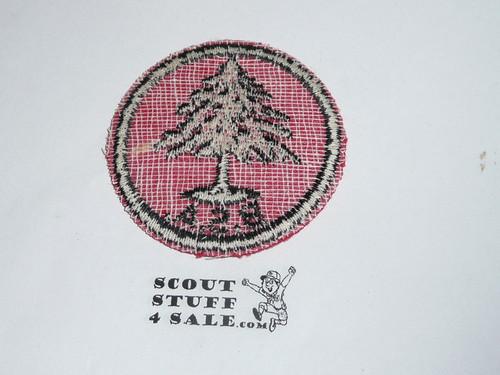 Pine Tree Patrol Medallion, Felt w/BSA black/White ring back, 1940-1955, used