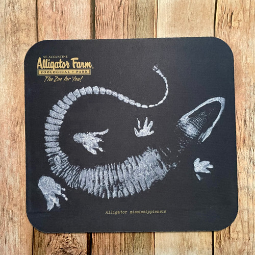American Alligator Print Mousepad