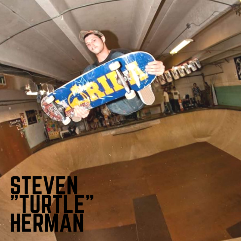 team-steven-turtle-herman-1-768x768.png