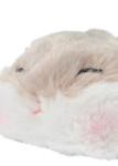 hamster coin purse closeup