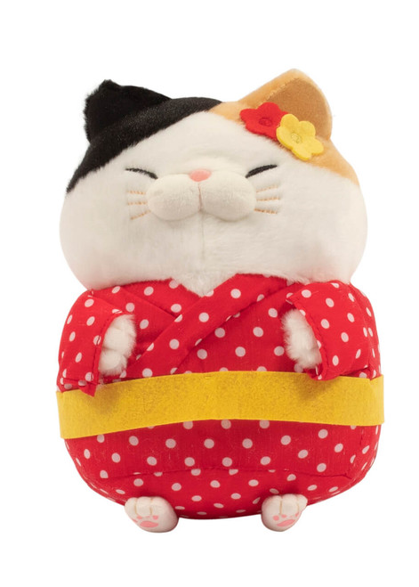 Cat dressed in city girl outfit - front shot