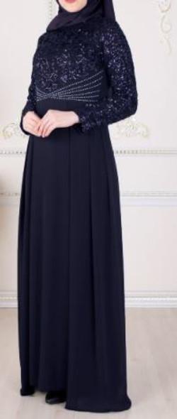 Dress Selvinur Plus Size Navy lace bodice
