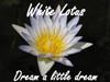 MY HERB CLINIC ® WHITE LOTUS FLOWER HERBAL TEA ~ ORGANIC CALMING RELAX MELLOW