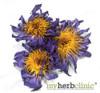 MY HERB CLINIC ® BLUE LOTUS ORGANIC WATERLILY Nymphaea Caerulea - WHOLE FLOWER