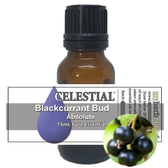 CELESTIAL ® BLACKCURRANT BUD (CASSIS) ABSOLUTE THERAPEUTIC GRADE ESSENTIAL OIL