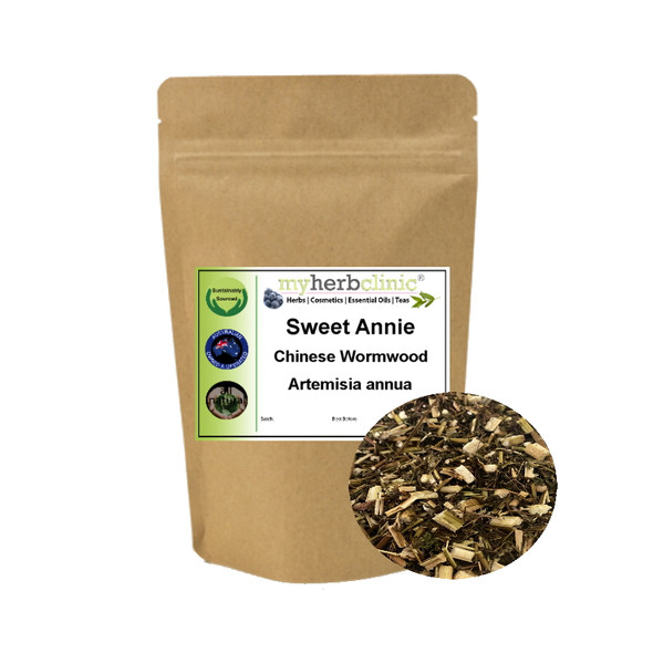 MY HERB CLINIC ® SWEET ANNIE - CHINESE WORMWOOD - Artemisia annua - BEST FRESH