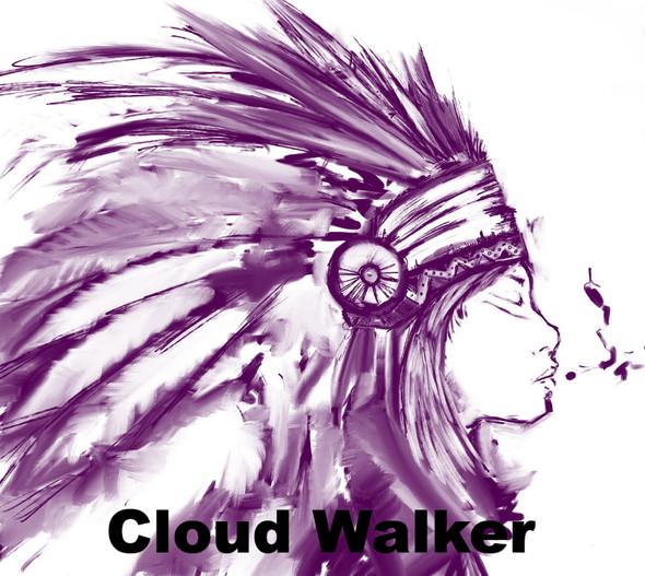 CLOUD WALKER ORGANIC HERBAL TEA ~ SLEEP WELL - PASSIONFLOWER MULLEIN HOPS