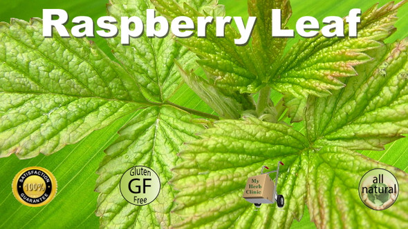 MY HERB CLINIC ® ORGANIC RASPBERRY LEAF TEA SUPPORTS THE FEMALE SYSTEM