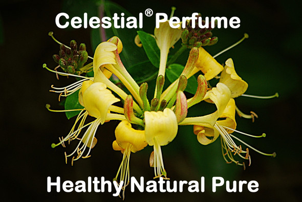 CELESTIAL | HONEYSUCKLE ORGANIC PERFUME OIL - FLORAL SCENT - HEALTHY NATURAL PURE