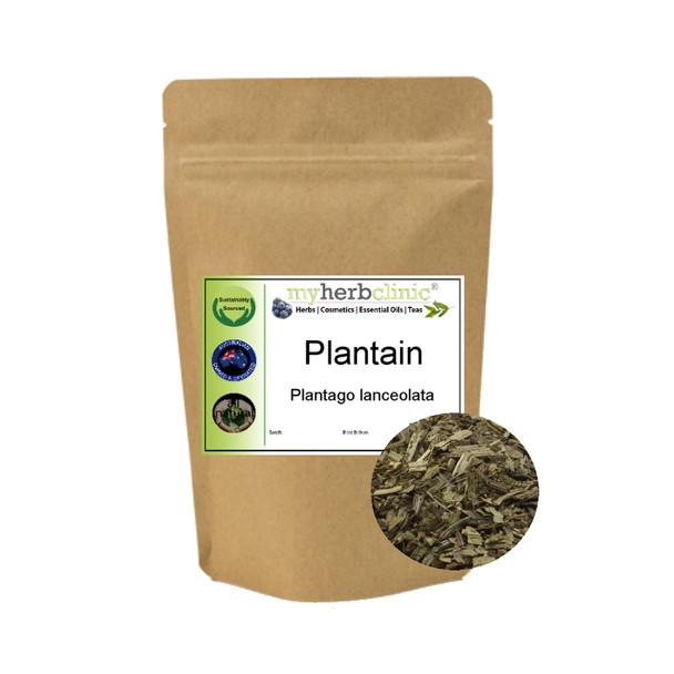 MY HERB CLINIC ® PLANTAIN - WAYBREAD - BEST QUALITY DRIED HERB Plantago lanceola
