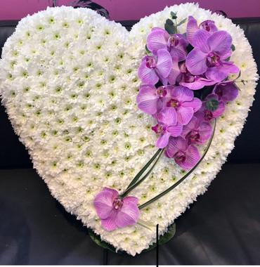2.Phalaenopsis Heart