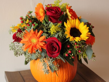 Treat yourself or someone special with our delightful floral pumpkin, will add a lovely touch of seasonal  colour to any room.