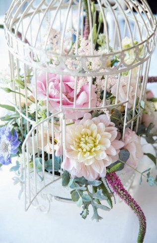 Spring Fever ~In this workshop we will be creating a design with fresh flowers and spring bulbs in a beautiful birdcage!