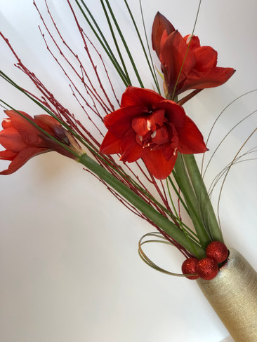 9.2 Red Amaryllis Design