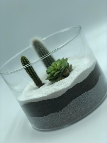 This beautiful cacti/succulent planter makes the perfect gift!  Created in a glass container and finished with decorative gravel