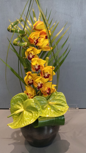 Cymbidium Tropical Arrangement